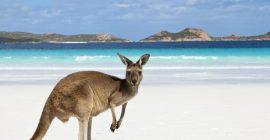 Für nur 199 € von Berlin nach Australien
