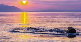 Trauminsel Bali für nur 349,- € (hin und zurück)