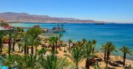 Sonne, Wüste und Delfine im Heiligen Land für 9,98 €