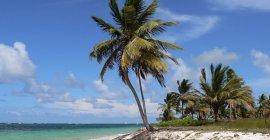 Last Minute: Für nur 265 € in die Dominikanische Republik